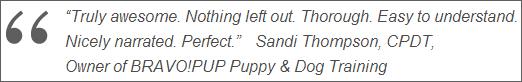 Sandi's Quote
